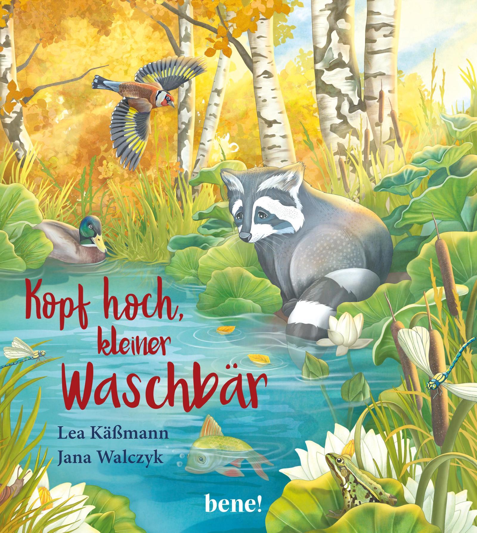 Cover Kopf Hoch Kleiner Waschbär Lea Käßmann